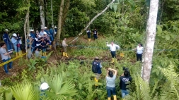 Amazonie 8