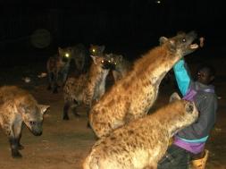 Ethiopie 2008